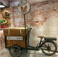Electric Mobile Coffee Vending Trike 3 Wheel Outdoor Beer Cargo Bike Ice Cream Tricycle