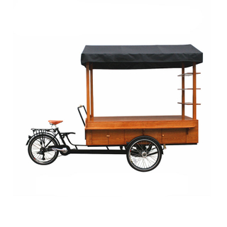 Vending Bicycle Adult Tricycle Electric Cargo Bike Street Outdoor Beverage Drink Coffee Van Food Cart for Sale Customizable