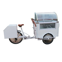 350w Portable Ice Cream Carts Bicycle Street Vending Cart Cargo Bike Tricycle Electric Trike for Adults