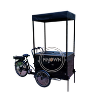 Customized Cargo Electric Tricycle for Sale Flower Adult Manpower 3 Wheel Bike with CE Certification